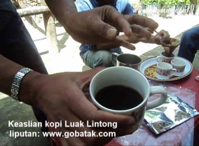 Kopi Luwak Lintong
